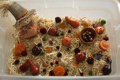 Harvest Sensory Table!!