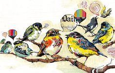BIRD ILLUSTRATIONS! by Jacqui Oakley, via Behance