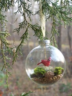 terrarium ornament. rocks, moss & little cardinal or mushroom maybe?