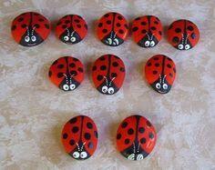 coccinella/ladybug