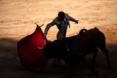 Spanish bullfighter Francisco Marco performs a pass to a bull during the third bullfight of the San Fermin festival in Pamplona on July 9. (Susana Vera/Reuters)