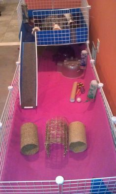Giant guinea pig cage! would love this for my little darlings!