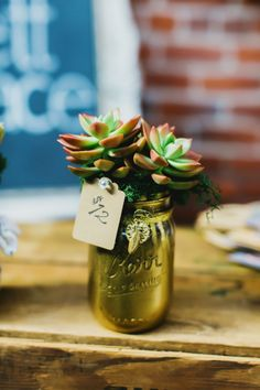 love these gold spray painted mason jars with gorgeous succulents