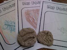 Make your own fossils! school, fossil, dinosaur summer camp, camp idea