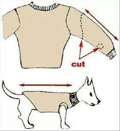 Make a dog sweater out of a sleeve. Why didn't I think of that?