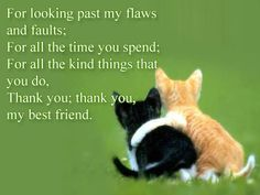 For all best friends no matter how many feet they walk on!