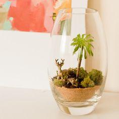 DIY Terrarium! Bonus: an adorable story behind this little plant's journey across the country