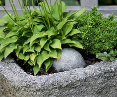 hypertufa planters (how to!)