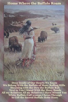 White Buffalo Calf Woman on Pinterest | 1153 Pins