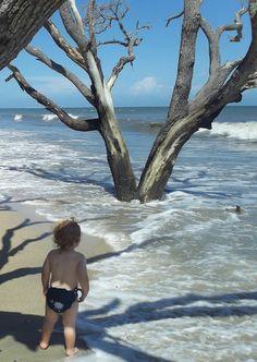 #Botany Bay SC #Edisto Island
