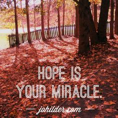Hope is your miracle.  Like Jo Hilder Writer on Facebook and jo_hilder_writer on Instagram for more spiritual sunshine, and visit johilder.com to find out more about programs, groups and courses for the brave and beautiful.