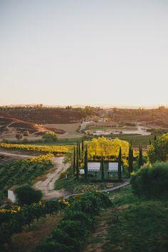 falkner winery wedding Temecula Winery Wedding California. Falkner Winery