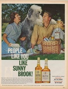 OLD ENGLISH SHEEP DOG IN 1963 SUNNY BROOK WHISKEY AND BOURBON AD