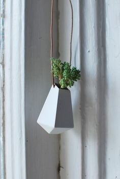 Awesome wearable planter