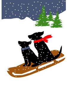"""Black Labs Sledding Greeting Card - these Labrador Retrievers put a smile on my face :) #outdoors"""""""