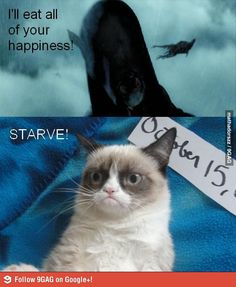 The Dementors and grumpy cat.