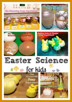 Easter Science for Kids: Fun Investigations and Experiments from Mom to 2 Posh Lil Divas