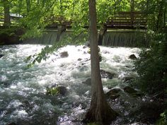 My photo I took at meremac springs park st .james MO