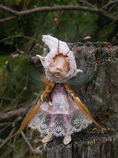 sweet bug fairie