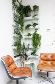 vintage chairs, living walls, shipping pallets, hanging plants, green
