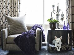 Stylish Pet Bed www.hgtv.com/decorating-basics/75-cute-pet-pictures/pictures/page-17.html?soc=pinterest