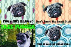 So many good ideas from Pugs.. hehe