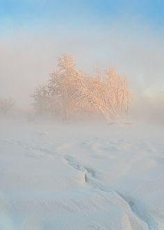 siberia in the winter
