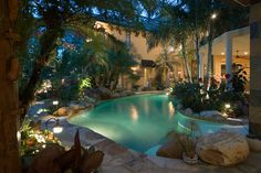 Hires Residence - tropical - pool - orlando - Silver Sea Homes