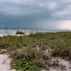 stormy on sanibel island