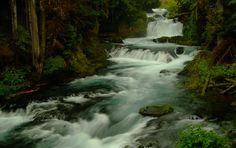 #Oregon