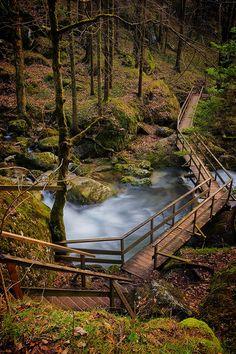 Wood bridge, the Alps, Austria