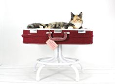 Upcycled Suitcase Pet Bed with Pedestal Base. $159.00, via Etsy.