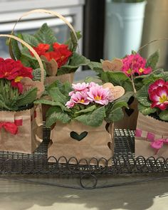 plant, brown paper bags, teacher gifts, mothers day, gift ideas