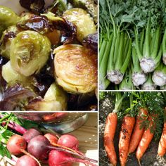 plant, growing vegetables, seed, nourishing traditions, food, carrot recipes, carrots, early spring, garden