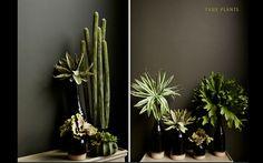 Faux Plants green Ab
