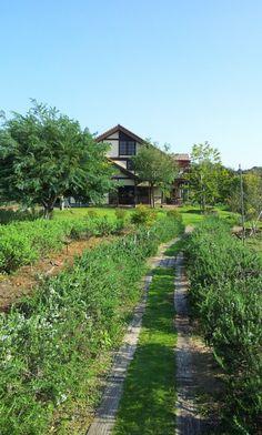 Ooga Farm #oita #japan