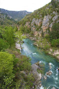 The Cevennes National Park in the Tarn Gorge, France