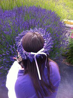 Beautiful fresh lavender head-wreath!