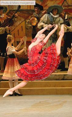 Svetlana Zakharova. The Official Site - Photo Gallery: Don Quixote