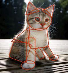 draw, cat, kitten, teaching shapes, art lessons, shape art, lesson plans, kid, smart boards