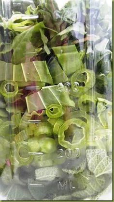 Poison Ivy Remedy - plaintain, jewelweed, sage, vinegar