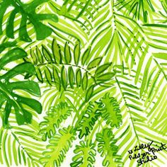 Deep in the Jungle #lilly5x5 | Bungle in the Jungle Inspiration