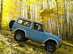 Early Bronco owners don't brake down hills....WE GAS IT!!!!  Love this color blue and the way the sun is hitting the trees.