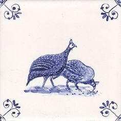 Guinea Hens Unite!