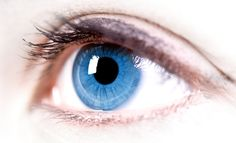 Herbs For Eye Health