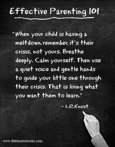 """""""When your child is having a meltdown, remember, it's their crisis, not yours. Breathe deeply. Calm yourself. Then use a quiet voice and gentle hands to guide your little one through their crisis. That is living what you want them to learn."""" 'The Gentle Parent: Positive, Practical, Effective Discipline' by L.R.Knost www.littleheartsbooks.com"""