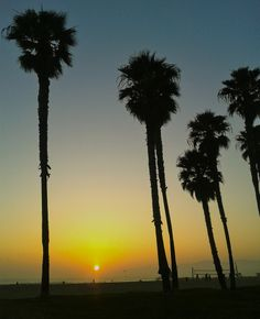 Sunset over Venice Beach. Wanderlust Wednesday with Lydali and the creative energy of LA.