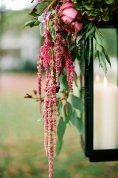 wedding photography, hanging flowers, pink weddings, cedarwood inspir, wedding lanterns, autumn weddings, amaranthus inspir, flower photography, garden weddings