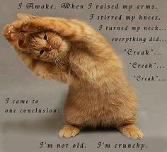I'm not old.  I'm crunchy.