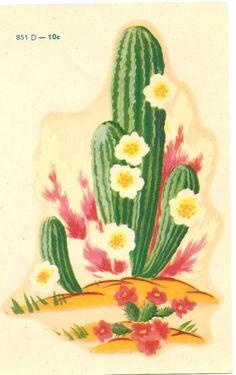 MEYERCORD Decals-851D-Desert Cactus in Bloom